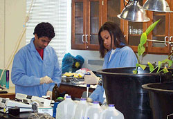 hazardous waste and environmental design treatment lab
