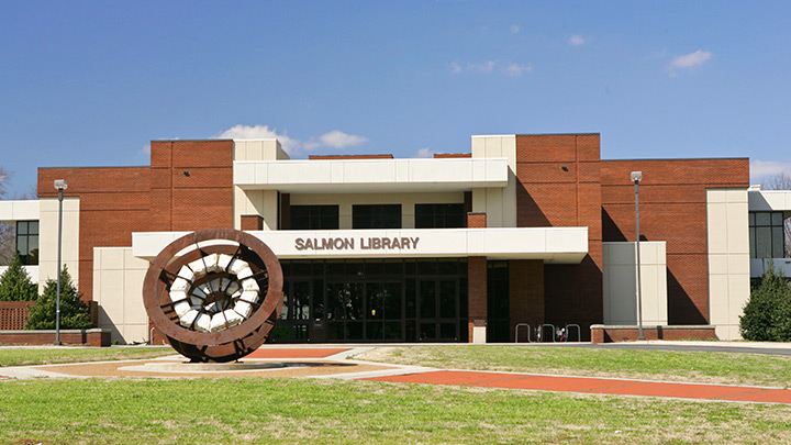 Salmon Library
