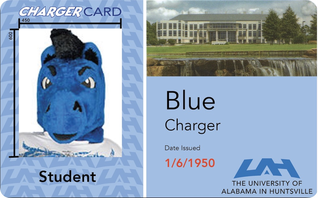 examplechargercard