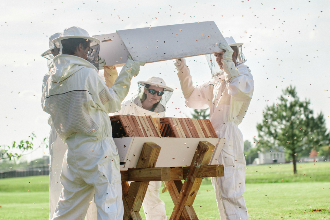 cropped bee keepers