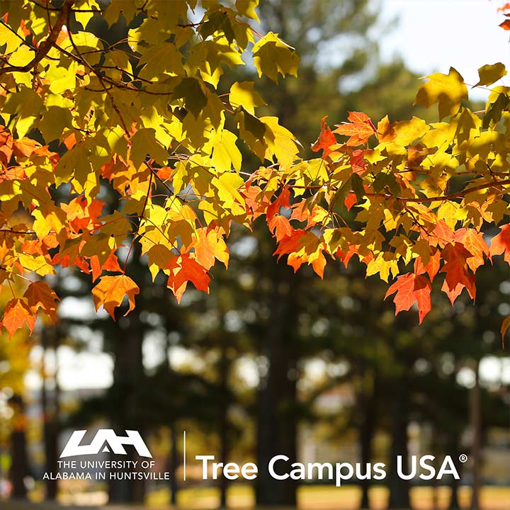 UAH - Tree Campus USA