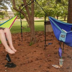 hammock-study-break