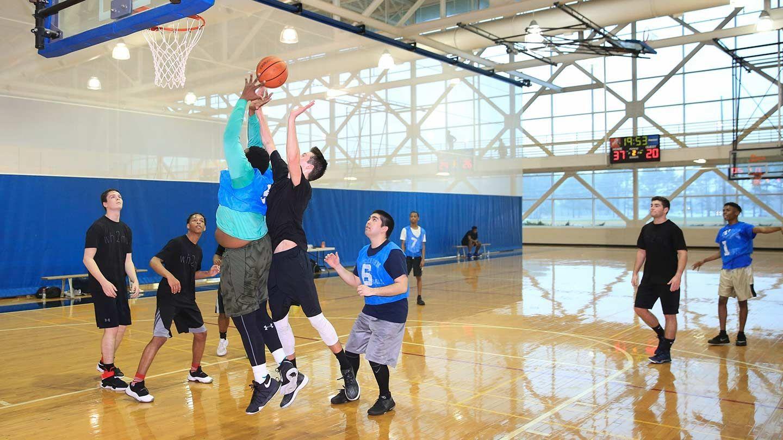 ufc-basketball