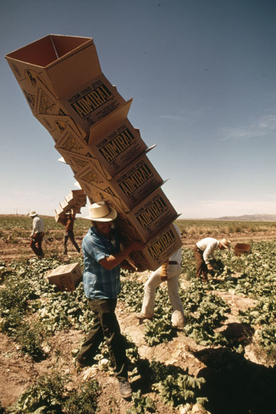9 Mexican_Farm_Workersmall