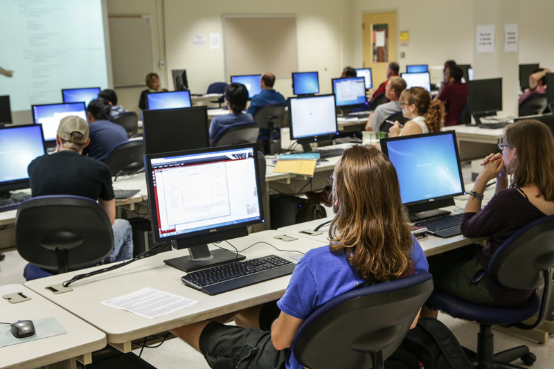 illustration of Computer Information Technology students