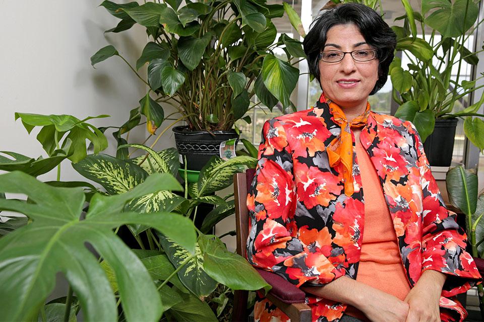 Dr. Azita Amiri