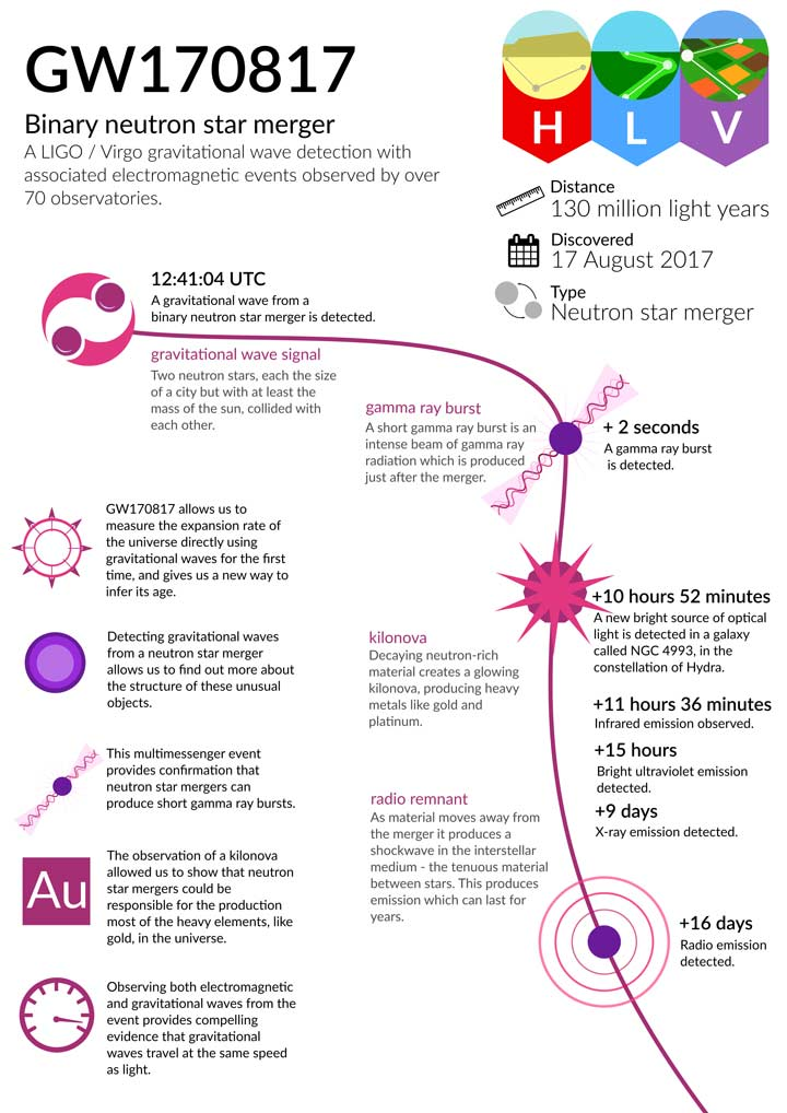GBM infographic