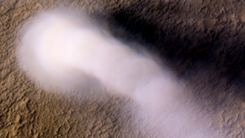 The dust devil and the details: Spinning up a storm on Mars