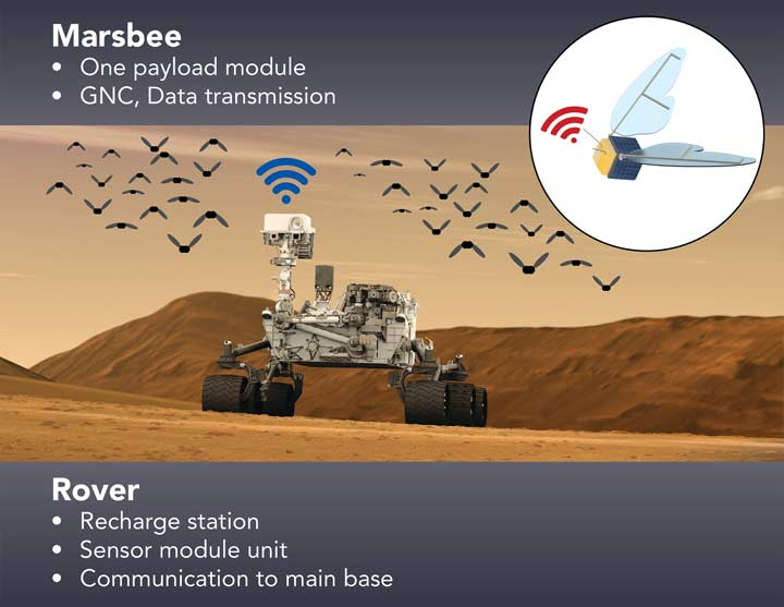 Marsbee one payload module, GNC, data transmission. Rover, recharge station, sensor module unit and communication to main base.
