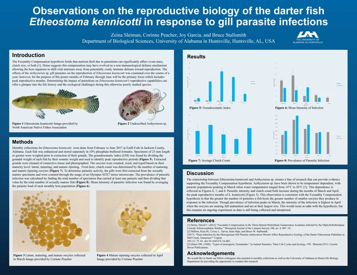 Observations on hte reproductive biology of the darter fish Etheostoma kennicotti in response to gill parasite infections